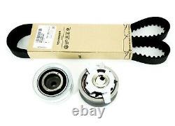 Genuine Volswagen Audi Timing Belt Kit A3 A4 A5 A6 Q5 Tt Golf V/vi Skoda Seat