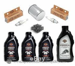 Kit Tagliando Véritable Harley Davidson Sportster 883 E 1200 Olio Filtro Candele